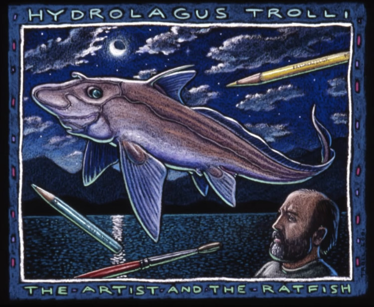 Hydrolagus Trolli Named After Alaskan Artist Ray Troll