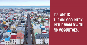 Iceland facts