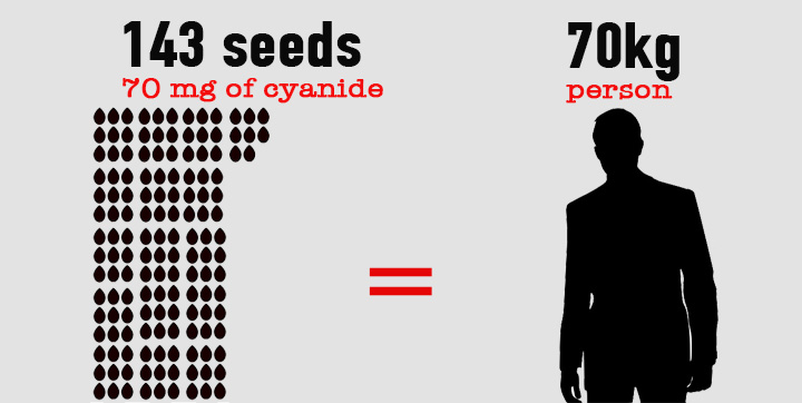 Apple seeds cyanide