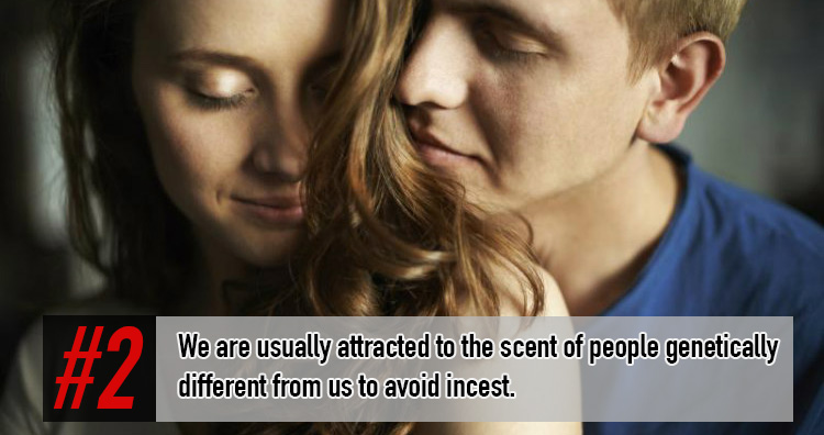 Facts about Incest