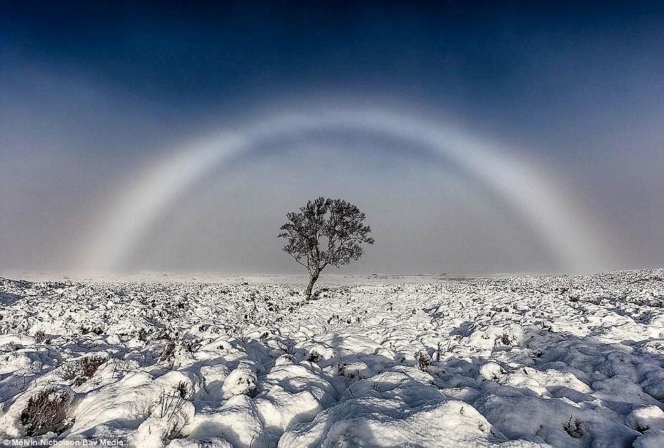fogbow,