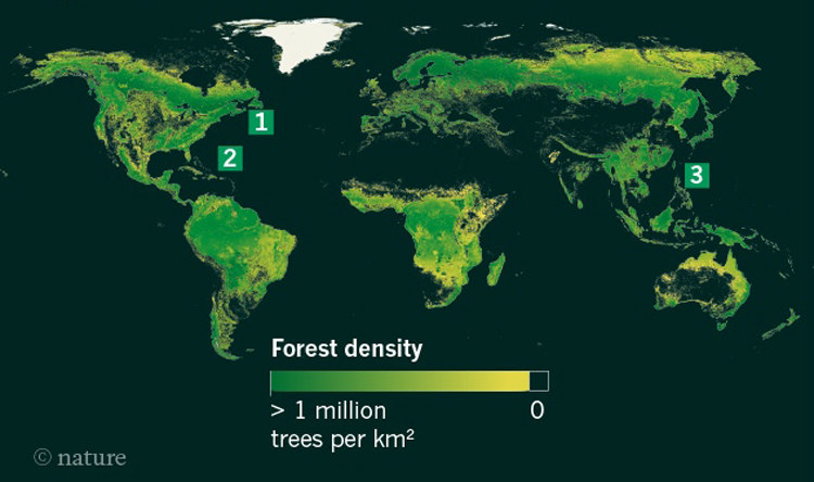 Number of Trees on Earth