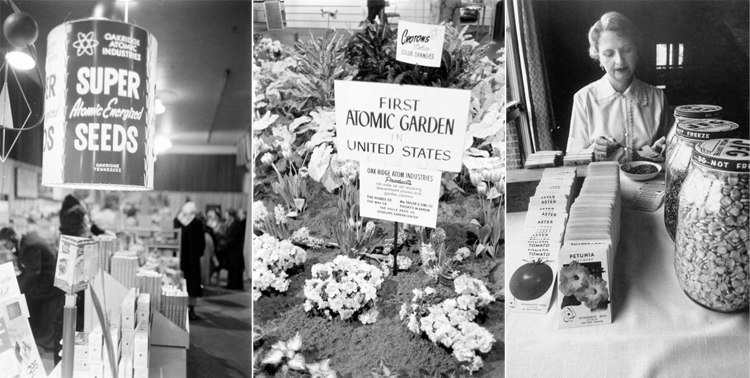 Atomic Garden Fair and Mrs. Clarence J