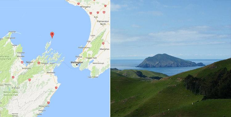 Stephens Island, New Zealand
