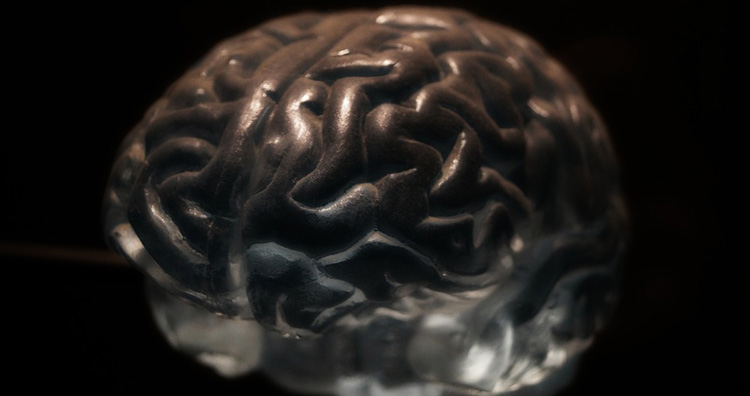 Brain Feel No Pain