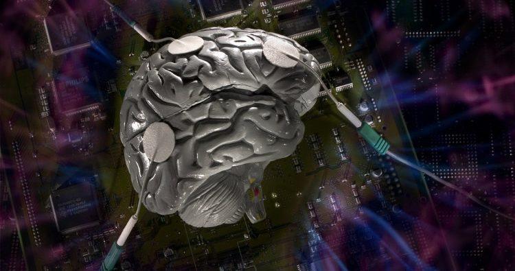 Brain Storage Capacity