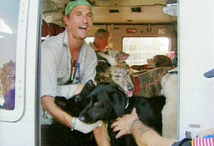Matthew McConaughey and Animals