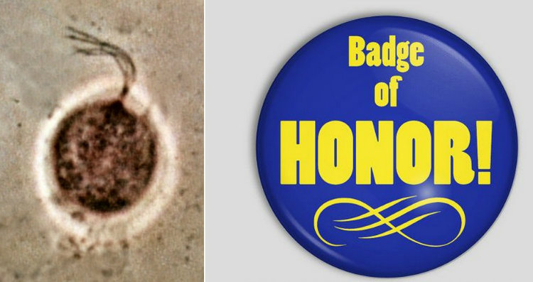 Trichomonas vaginalis and badge of honor