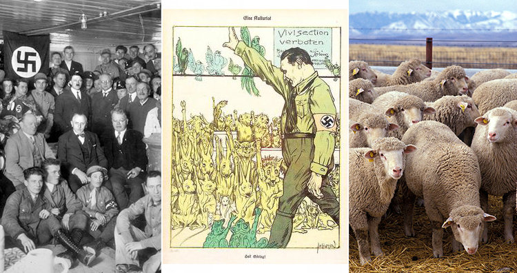 Nazi party and animal rights poster and sheep