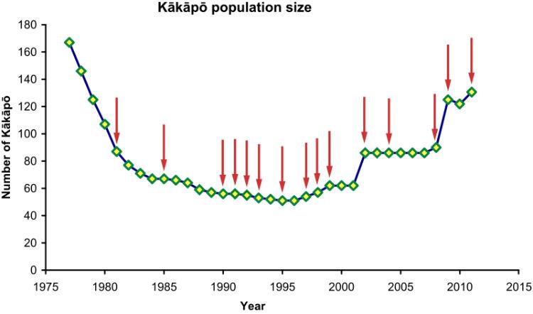 Kakapo Population Size