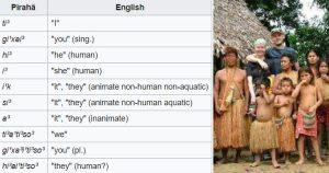 Linguistic Facts