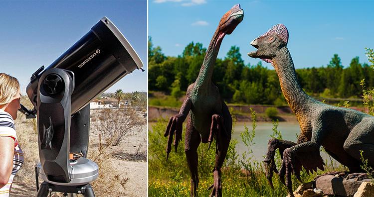 Watching through Telescope, Dinosours