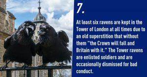 Weird Superstitions