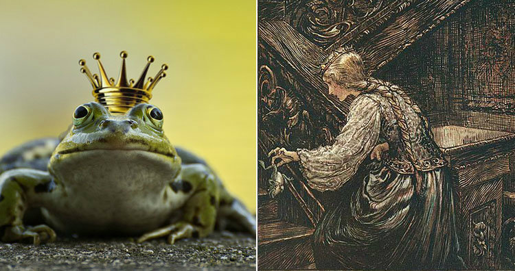 Frog in crown and Frog Prince illustration