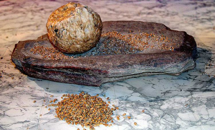 Grindstone for Processing Grain in Neolithic Period