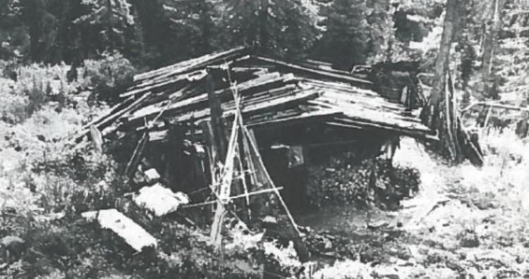 The Lykov family cabin