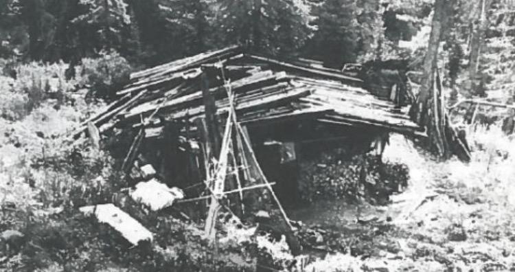 The Lykov family cabin