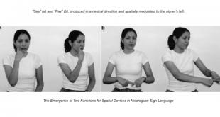 Nicaraguan Sign Language