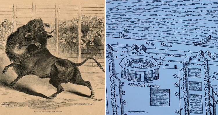 Bull-baiting, Bull-baiting arena