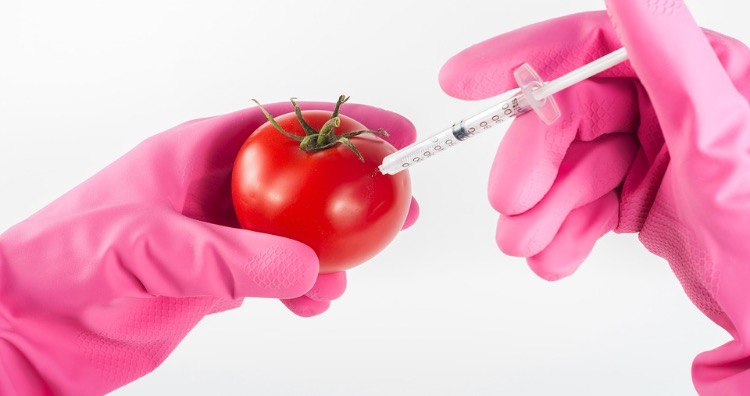 Genetically Modified Organisms are not proven to be harmful