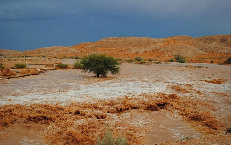 Flash Floods in Libyan Desert