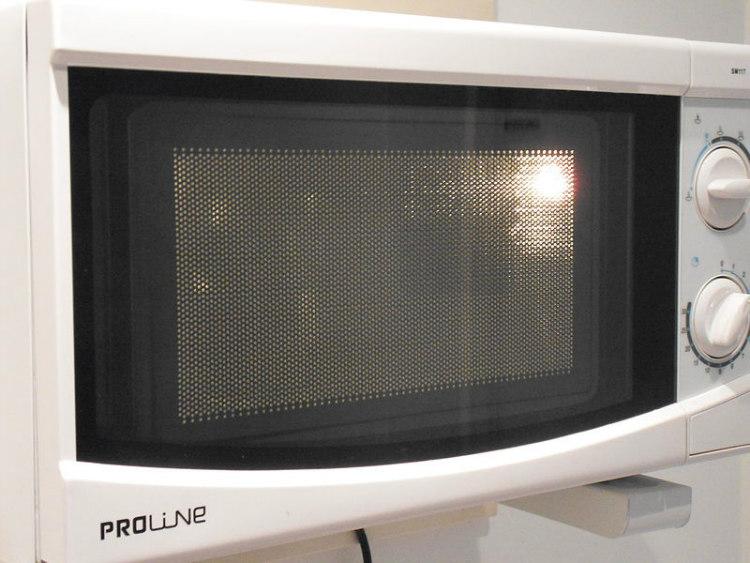 Mesh Door of a Microwave Oven