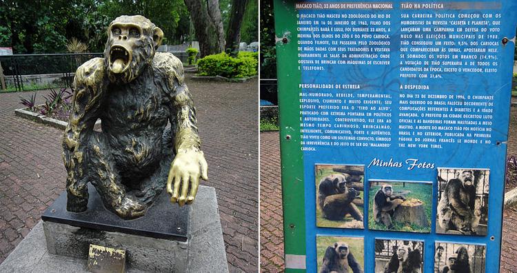 Macaco Tião