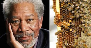 Morgan Freeman as a beekeeper