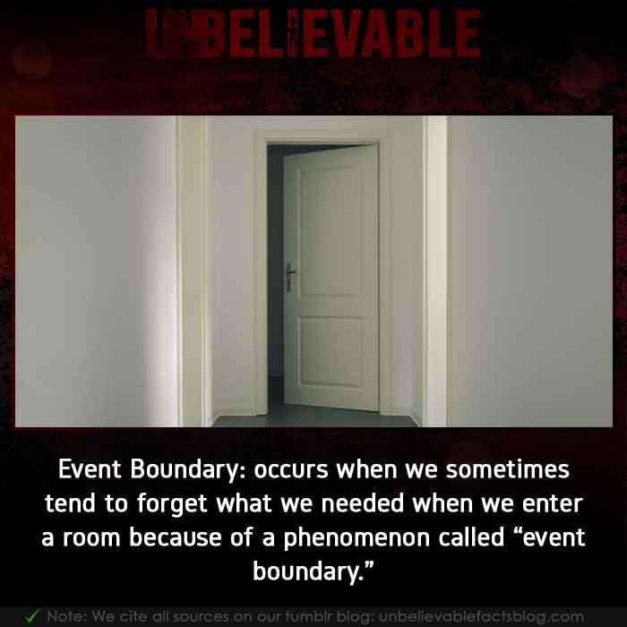 Event boundary psychology