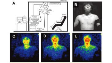 Human Body Phenomena