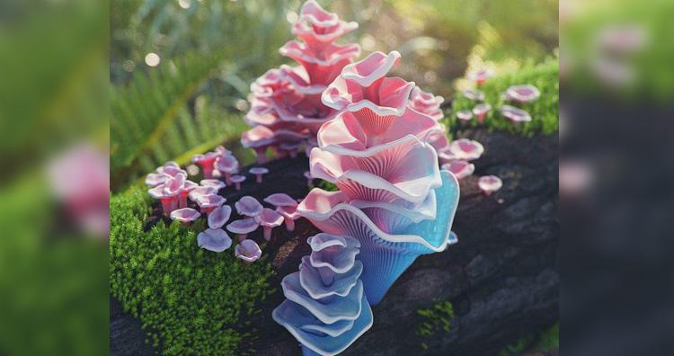 barbie pagoda fungus
