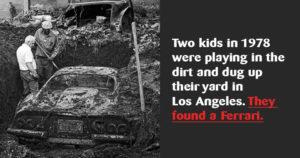 Weird fun facts