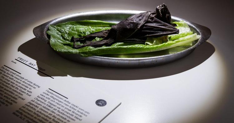 disgustingfoodmuseum