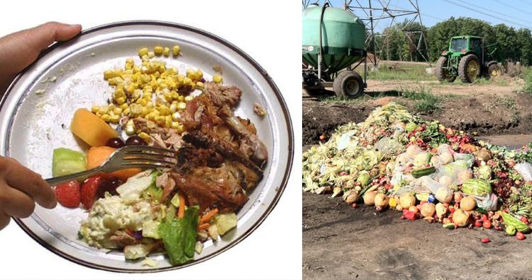 Food Wastage