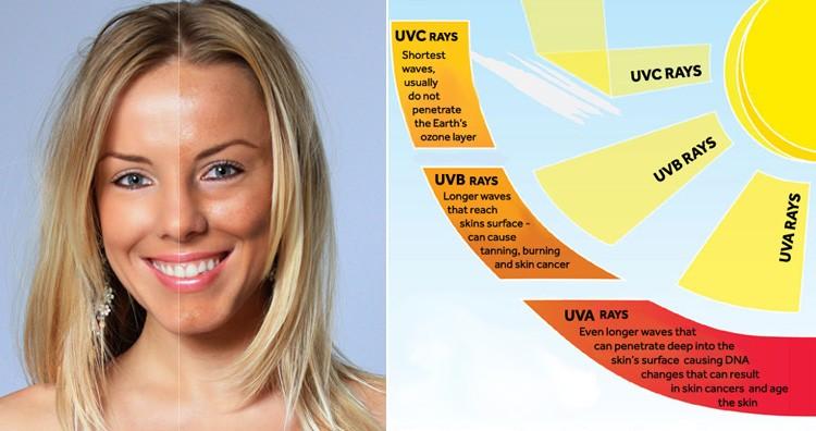 UVA & UVB rays