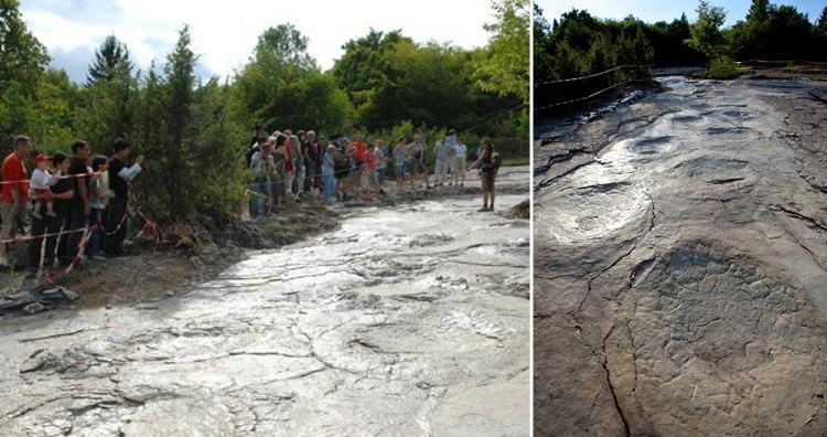 Dinosaur Footprints in Plagne, France