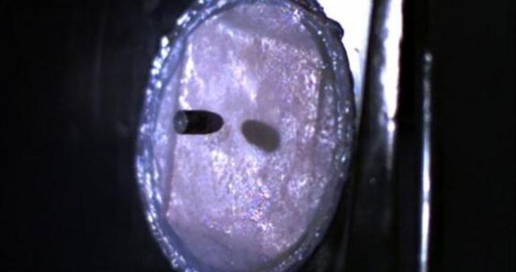 Bulletproof human skin