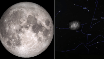 Earth Has Two Hidden Moons