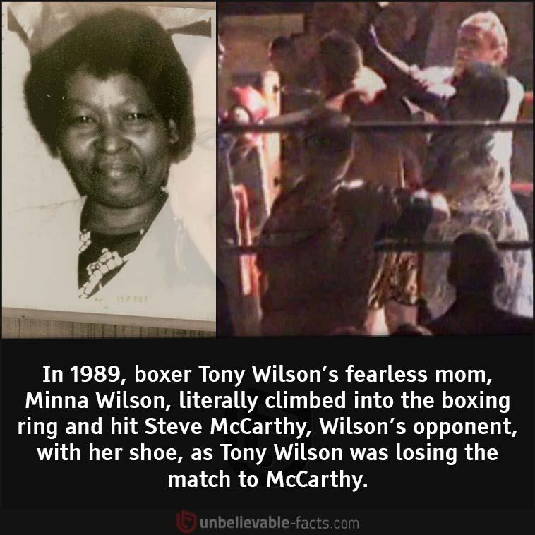 Minna Wilson