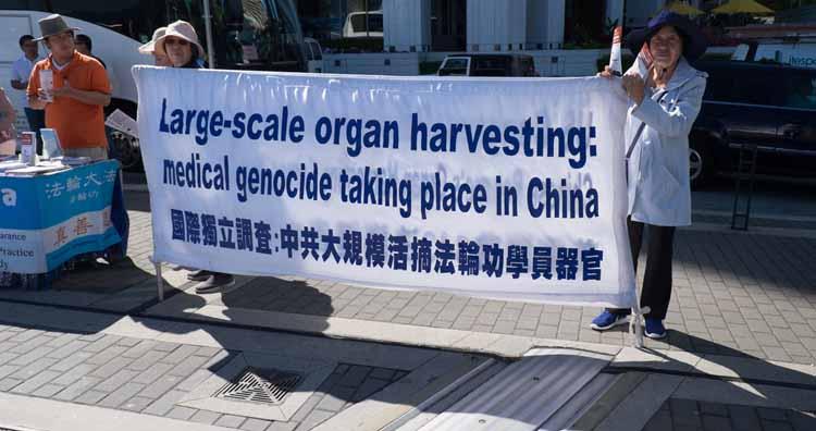 Organ harvesting Falun Gong