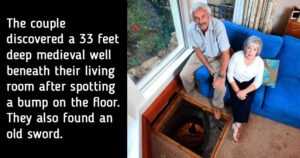 Surprising things discovered in homes