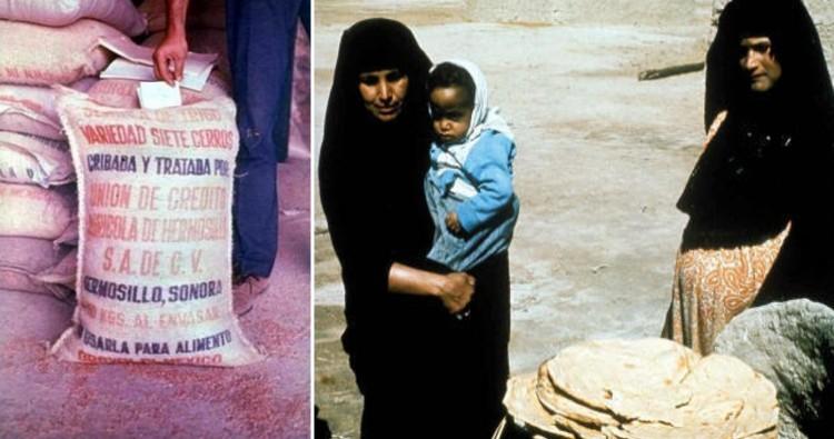 Iraq Poison Grain Disaster