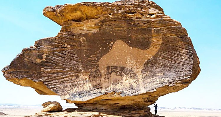 A camel petroglyph at the Bir Hima