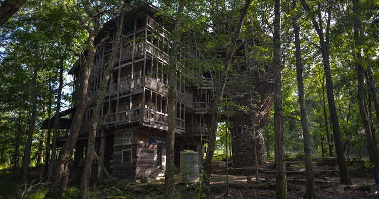 Horace burgess tree house